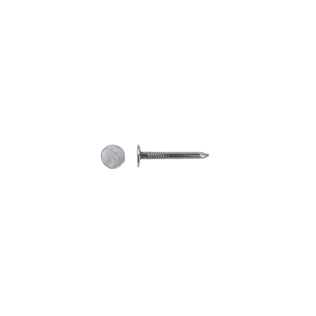 Duradrive 1 In Electro Galvanized Steel Roofing Nails 50