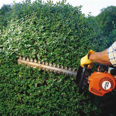 STIHL HS45 18 in  Hedge Trimmer